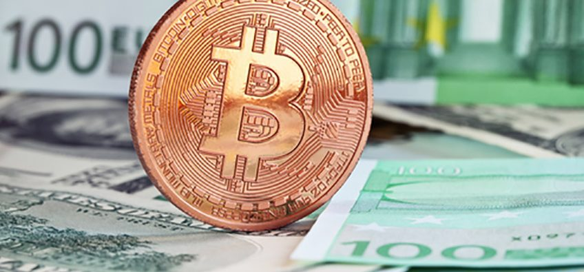 The Crypto Craze